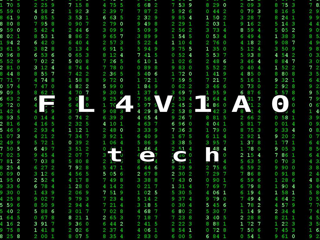 FLAVIAO.COM